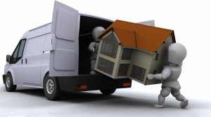 Mover in Guelph